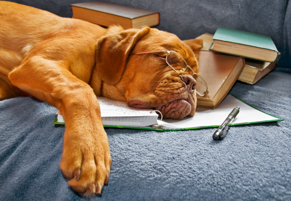 les différents types de fatigue