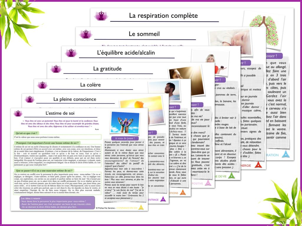 image presentation fiche